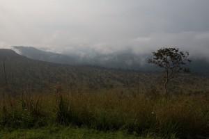 The beautiful Lefini Reserve