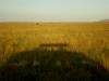 kenya-and-tanzania-209