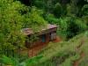 kenya-and-tanzania-374